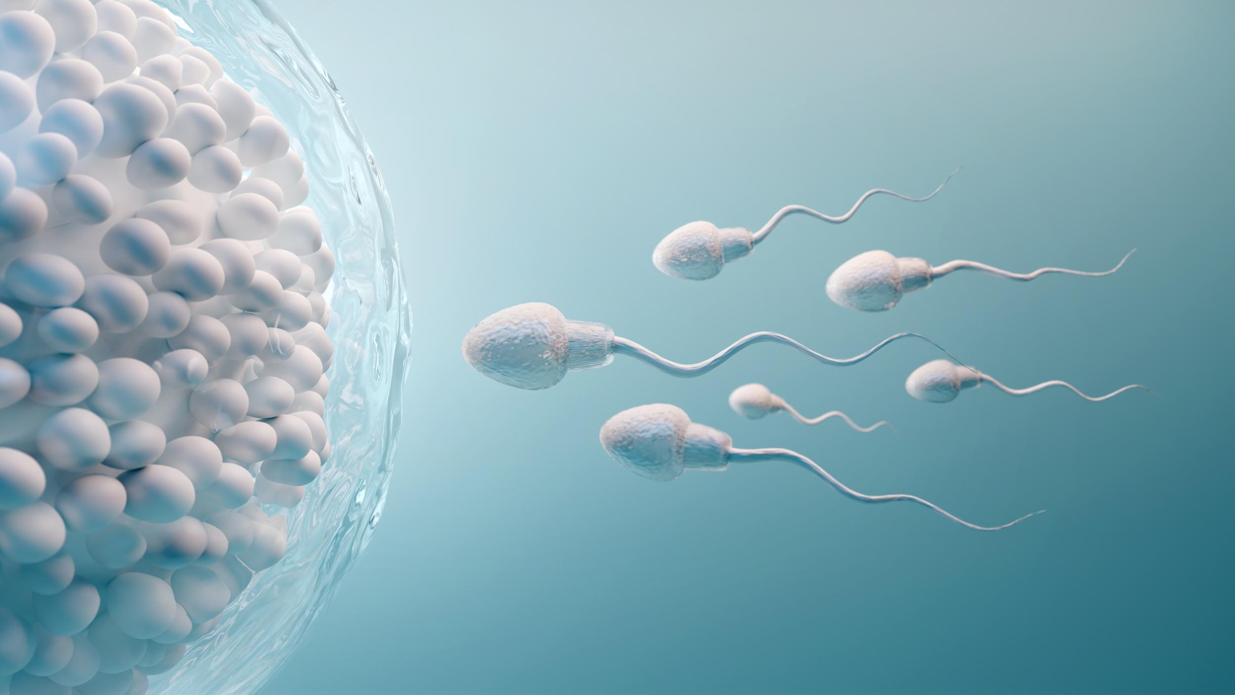 Ako otehotnieť, keď sa nedarí - rady ako docieliť prirodzené otehotnenie